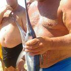 Cattura un cucciolo di pesce spada, ora rischia una multa da seimila euro