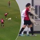 """Il cane invade più volte il campo durante la partita, i panchinari costretti a """"distrarlo"""""""