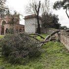 Detenuti per il verde di Roma: squadra al lavoro a Villa Pamphili