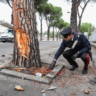 Incidente ad Arzano, Maria muore a 17 anni. Feriti altri sette giovani tra cui il fratello